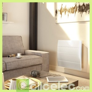 radiateur corps de chauffe fonte calissia connect atlantic. Black Bedroom Furniture Sets. Home Design Ideas
